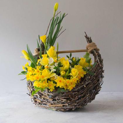 daffoldil and narcissus basket.jpg