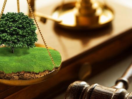 Арендатору муниципальной земли не требуется согласие  на передачу в субаренду