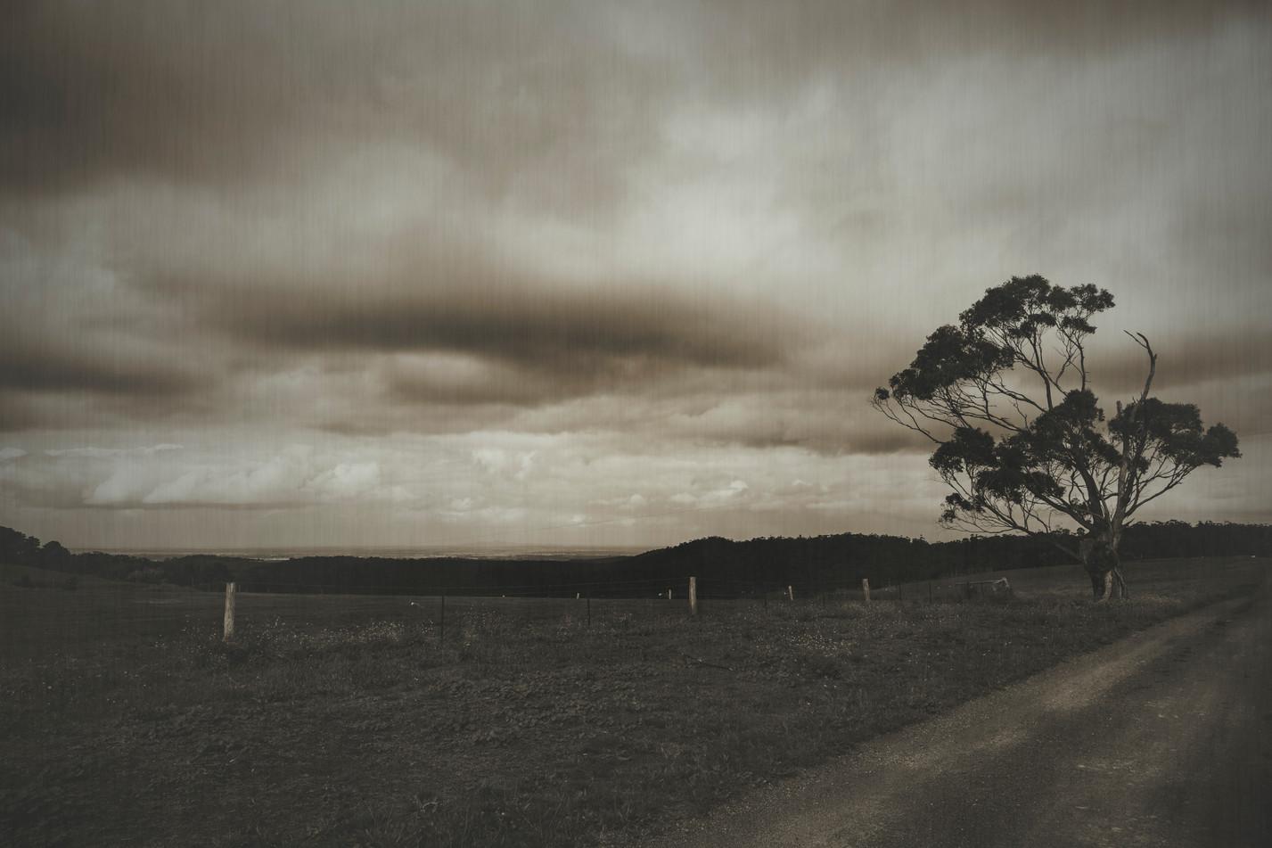 Landscape 20.jpg