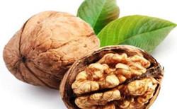 Walnut with shell