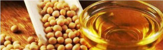 Crude & Refined Soybean Oil