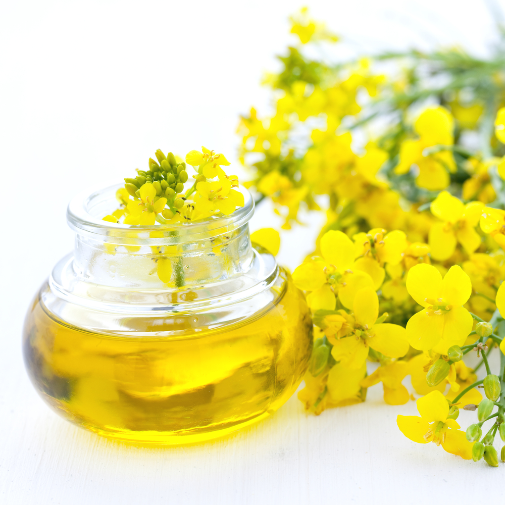 Rapeseed Oil Crude & Refined