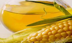 Crude & Refined Corn Oil