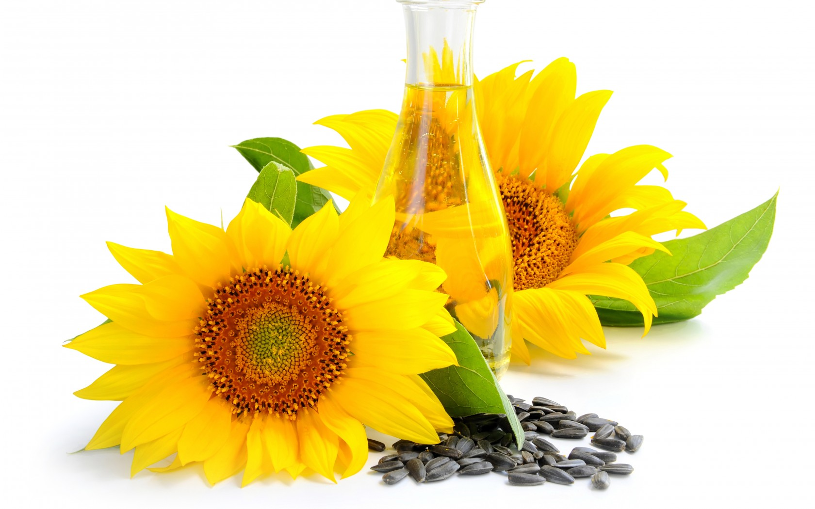 Crude & Refined Sunflower Oil