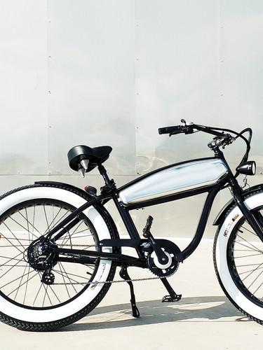 Z8 Fat E-Bike franchise .jpg