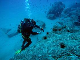Diving at Fuerteventura