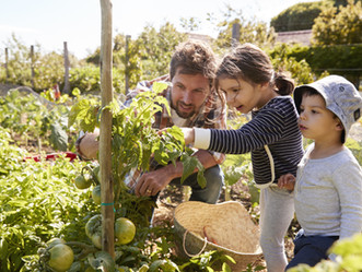 The Benefits of Gardening for Sensory Processing and Building Strength