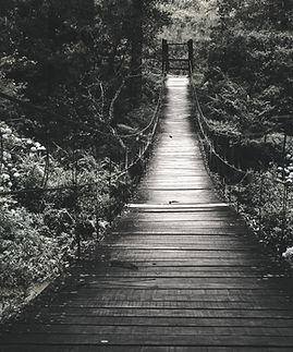 nature bridge_edited.jpg