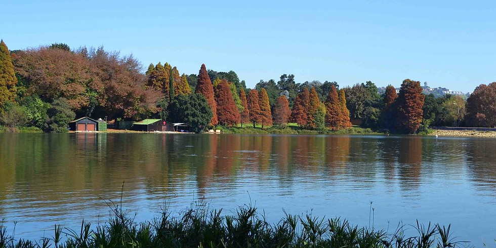 Breathe in the park