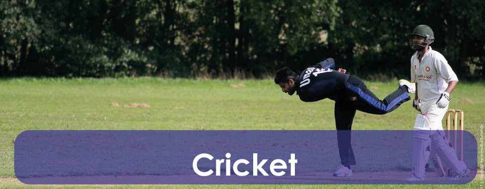 start-cricket.jpg