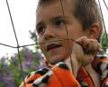 bigstock-The-Soccer-Boy-444427.jpg