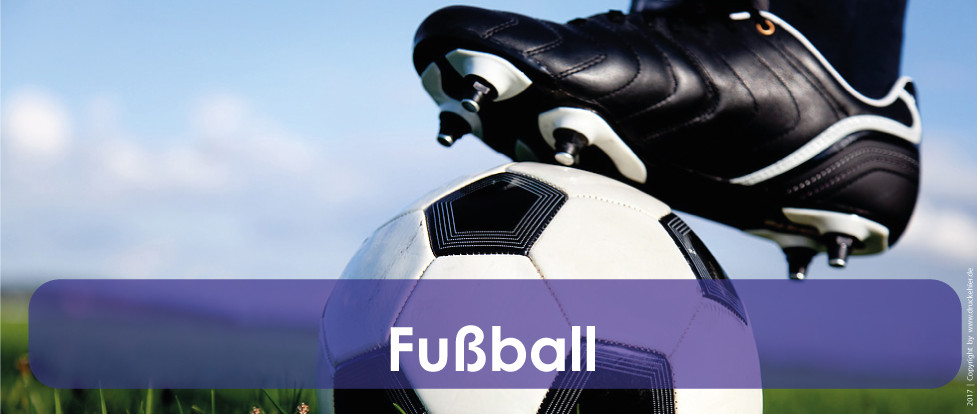 start-fussball1.jpg