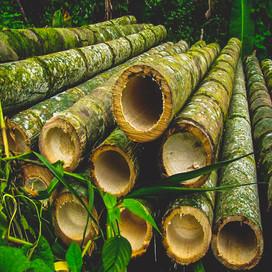 Allpa Bambú 4