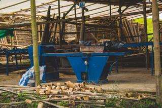 Allpa Bambú 2