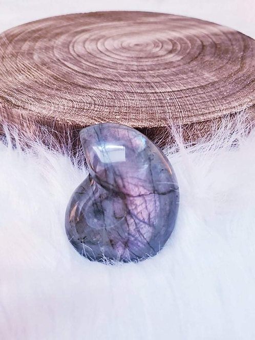 Labradorite Ammonite