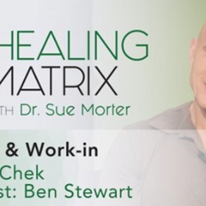 HEALING MATRIX with Ben Stewart