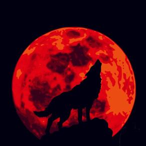 Wolf Moon Jan. 10, 2020