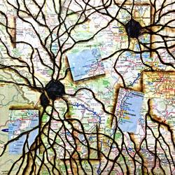 Synapse Maps III