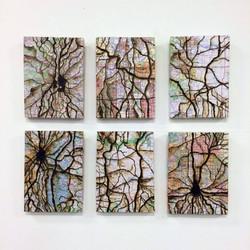 Synapse Maps