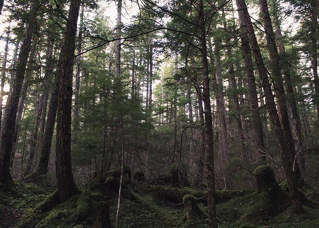 TIME, Juneau