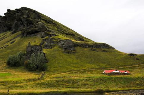 Mountain Rose, Westfjords