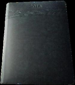 eje-13