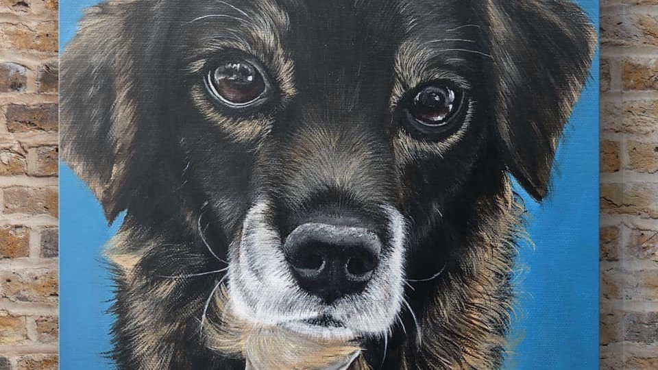 10x10 inch Custom Pet Portrait
