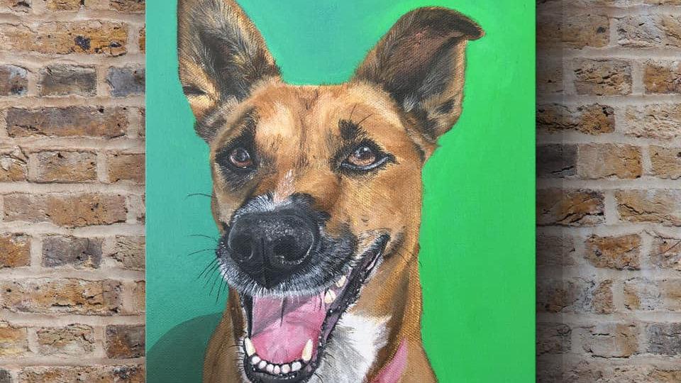 9x12 Inch Custom Pet Portrait