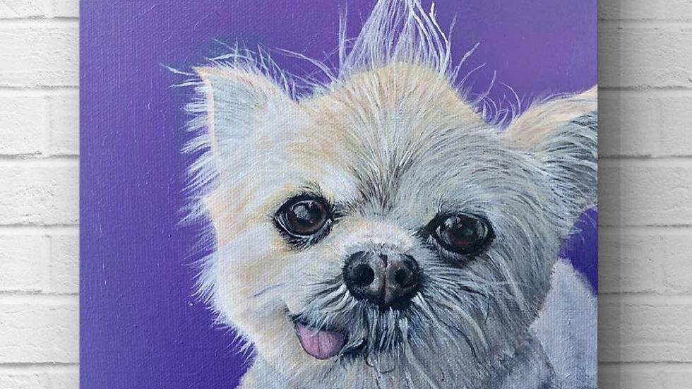 8x8 inch Custom Pet Portrait