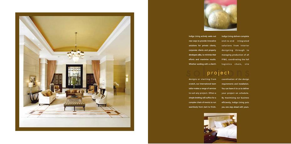 Indigo brochure 2.png
