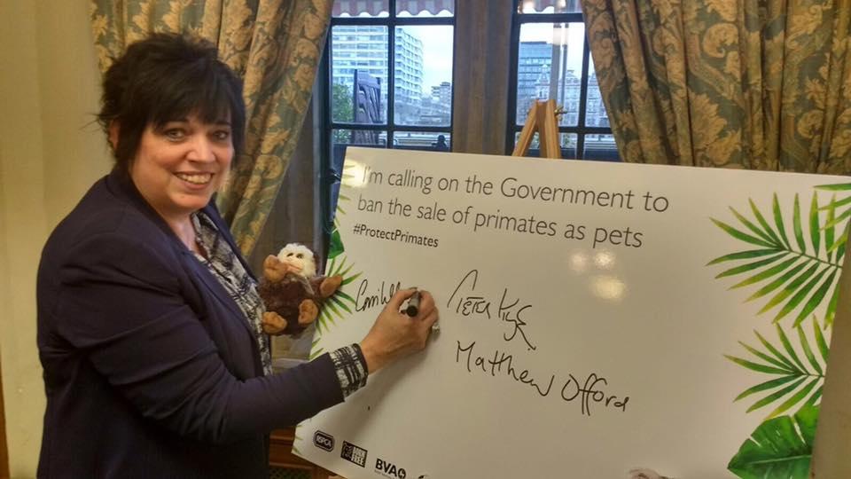 RSCPA Primate Campaign