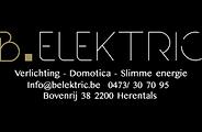 belektric_log.png