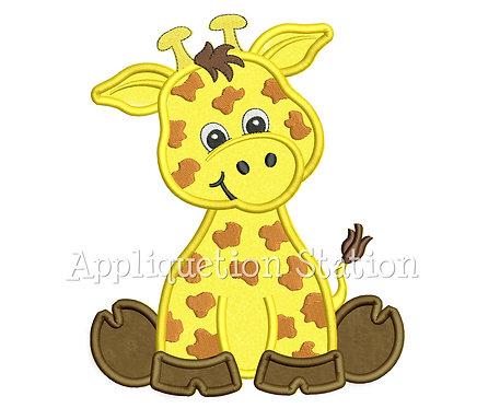 Zoo Baby Giraffe