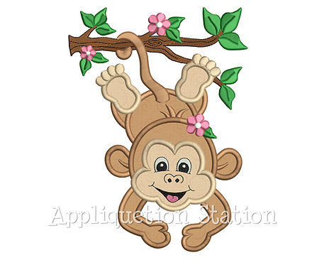 Zoo Baby Girl Monkey Hanging from Branch