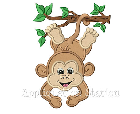 Zoo Baby Boy Monkey Hanging from Branch