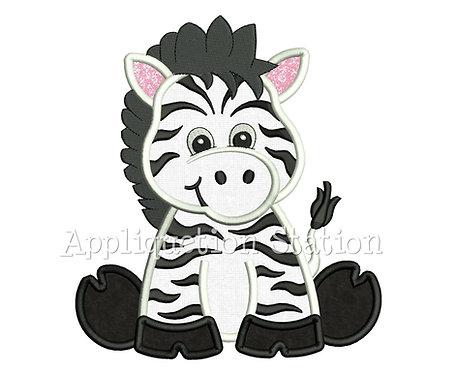 Zoo Baby Zebra