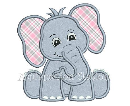 Zoo Baby Elephant