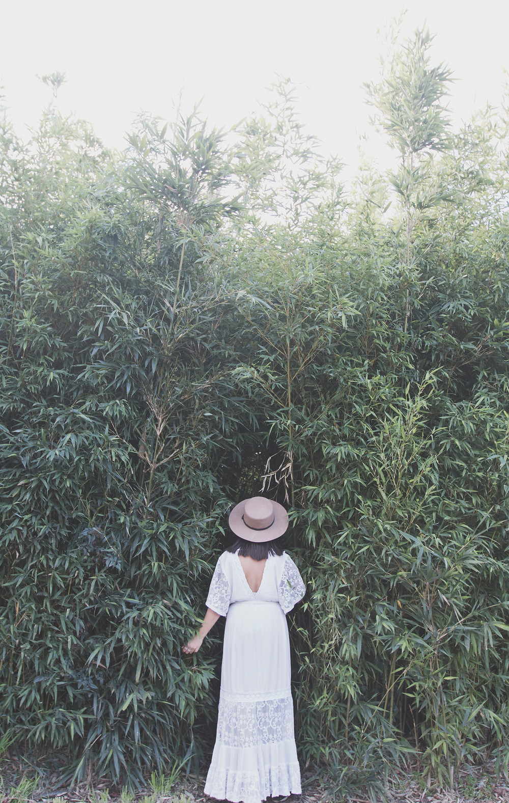Venturing into bamboo forest of Floriade
