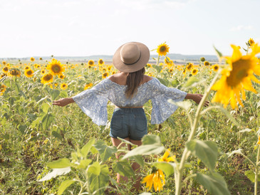 Sunflower fields? Yes, they really do exist!