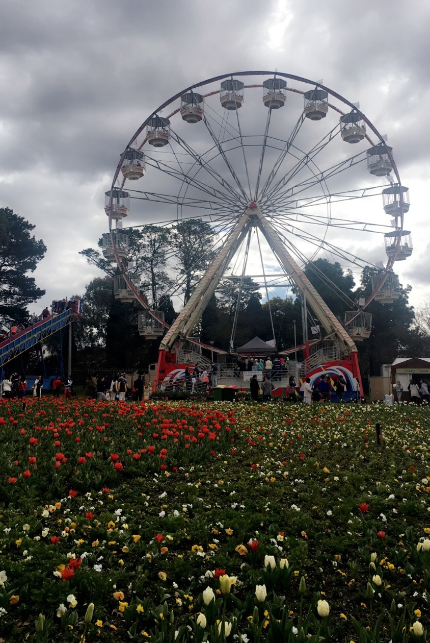 Floriade Ferris Wheel