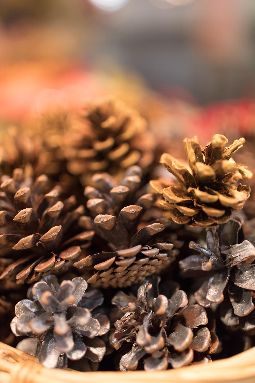 Gorgeous pine cone decorations