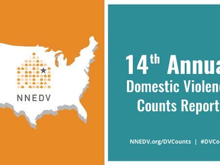 14th Annual Domestic Violence Counts Report