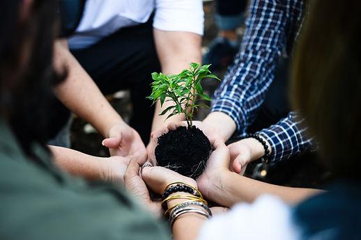 Mãos unidas promovendo a sustentabilidade
