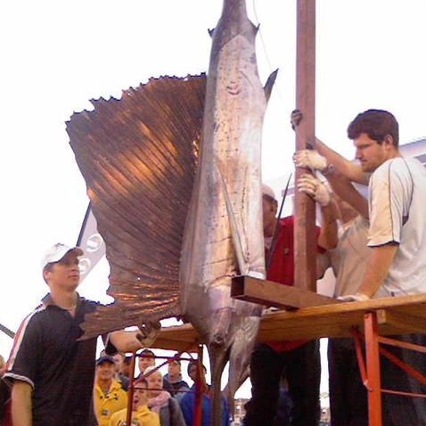 Gamefishing