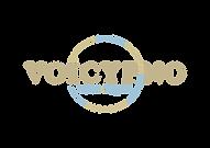 voicypno_logo_fix_OL_0315.png
