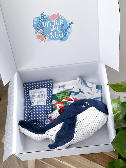 Monthly Gift Box | April | Under The Sea