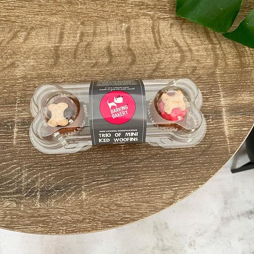 Birthday Cupcakes | Mini Iced Trio