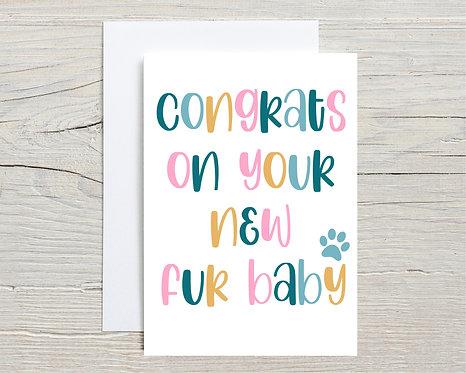 Card   Congrats On Your Fur Baby Colour