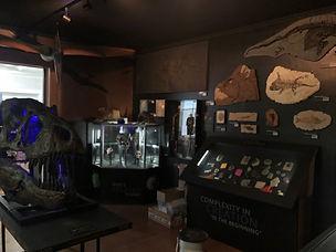 Fossil Exhibit.jpg