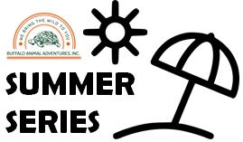 BAA Summer Series logo.jpg